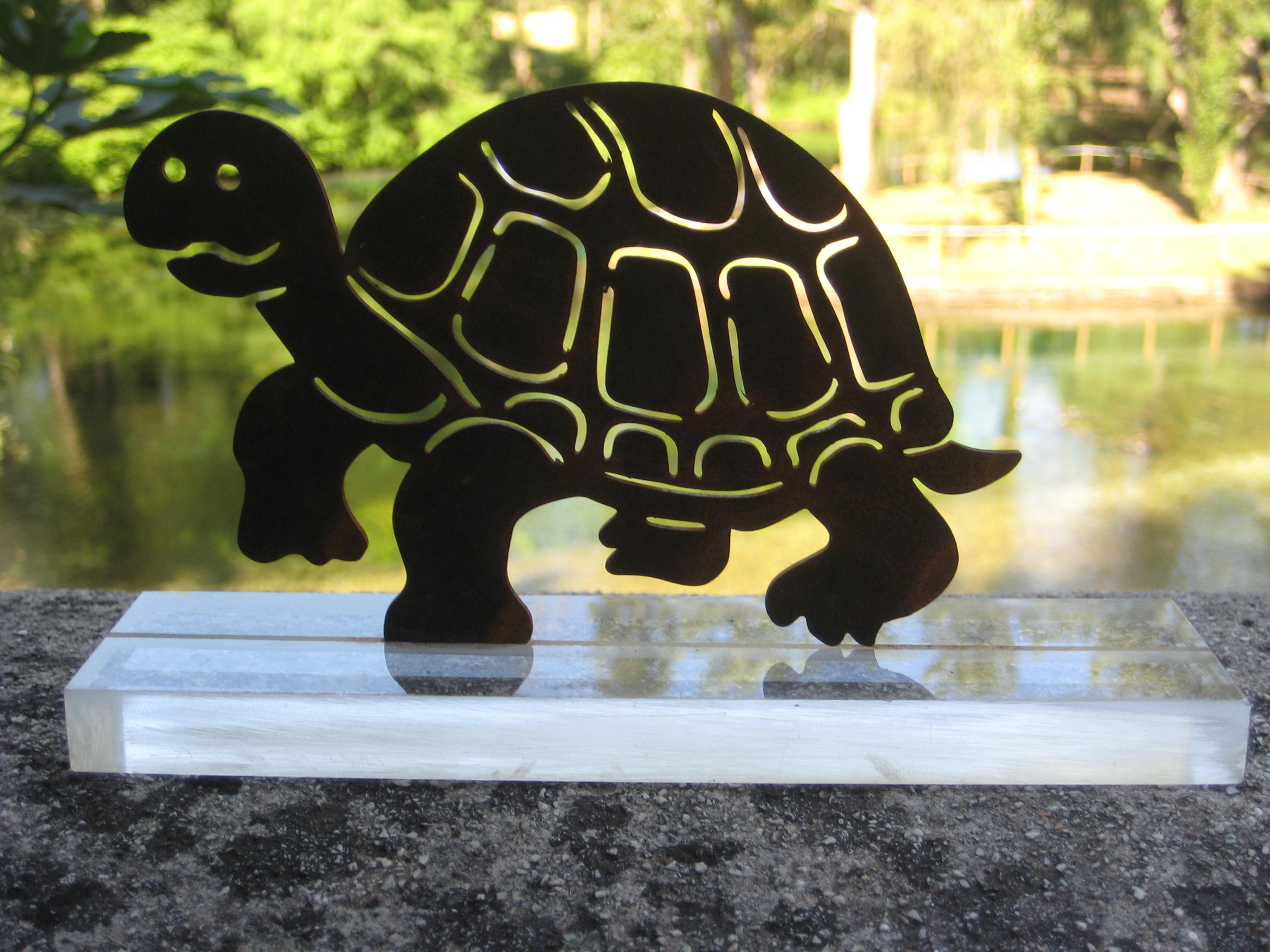 Tartaruga portafortuna meridiane su misura produzione for Tartaruga da giardino