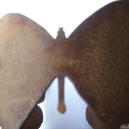 farfalle verdefuoco